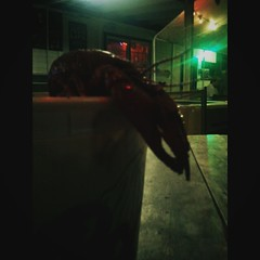 .crawfish and beer. (darkhairedgirl) Tags: magichour