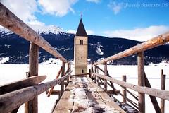 The bell submerged - Il campanile sommerso (Davide Scuccato) Tags: lake canon bell campanile tamron dolomites dolomiti resia lagodiresia curonvenosta