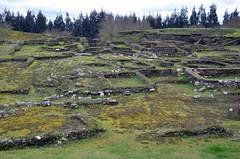 Castro de Viladonga B (Majorshots) Tags: galicia galiza castro hillfort viladonga castrodeviladonga