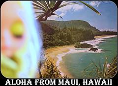 Blythe A Day ~ APRIL 2013 ~  Day 4:  OCEAN (Heidi @ Blythe Fifth Avenue) Tags: ocean usa hawaii relaxing maui pacificocean lanai wishyouwerehere hawaiianislands mauihawaii tropicalparidise zabrinazadora blytheadayapril2013 day4ocean