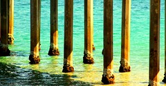 Brighton Pier Posts #Australia #dailyshoot (Leshaines123) Tags: sea colour beach les contrast brighton flickr patterns australia adelaide tele facebook telefoto repeatingpatterns 2013 anawesomeshot tumblr dazzlingshot vividandstriking me2youphotographylevel1 leshaines dailyshoot2013