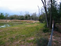 lake005 (Jesse C Smith Jr) Tags: lake deeplake tomballtexas jessecsmithjr