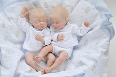 "babies (Sculpey Living Doll) / 22.5cm, OOAK ( ""one of a kind"") (AlexEdg) Tags: toy doll babies handmade ooak polymerclay livingdoll 2013 alexedg alledges"