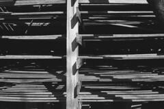 (Luca Tabarrini) Tags: blackandwhite film analog darkroom 35mm analogue ilfordfp4plus pellicola analogico cameraoscura canon1000f kodakd76 abandonedpowerstation lucatabarrini