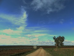 The dirt road (drager meurtant) Tags: extremadura space vast tree sky