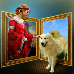 Lady in red and white dog (jaci XIII) Tags: dama vermelho co branco moldura pessoa mulher animal oob red white frame lady person woman