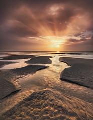 Carolina Daybreak (Appalachian Hiker) Tags: coast beach sunrise ocean sea sand sc shoreline rays sun