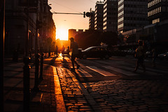 till the shadows and the light were one (ewitsoe) Tags: sun sunset summer ewitsoe street city urban people crossing light shadows buildings structure cityscape person walking nikond80 35mm streets longshadows poznan poland