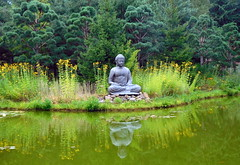 Buddha at pond/ Budda am Teich (be there...) Tags: water teich pond green scuplture budda spiegelung blumen bume