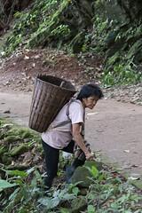 2016/07/26 14h18 villlageoise (village Hmong) (Valry Hugotte) Tags: chiangmai doisuthep hmong suthep thailand paysanne village thalande changwatchiangmai