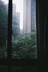my window in chongqing - sooc (whistle.and.run) Tags: film filmphotography filmgrain filmcamera filmnikon nikon nikonfm2 nikonfm nikonfilmcamera nikon35mm analog analogue analogphotography analoguephotography china chinese chinesearchitecture chinesebuilding chongqing travel travelling tree trees travelphotography traveling 35mm 35mmfilm 35mmphotography 35mmcamera 35mmcolourfilm 35mmcolorfilm