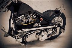 bikes-2009world-086-d-l