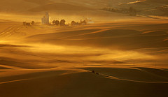Blows the Harvest Winds (Buddha's Ghost) Tags: landscape sunset dust wind windy winds wheat hills rollinghills grainelevator shadows scenic vista farming wheatfarms ripewheat sunlight evening sundown buddhasghost 15 palouse harvest wheatharvest crop goldengrain grain golden gold