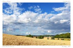 La limagne (BerColly) Tags: france auvergne puydedome vertaizon ete ciel sky nuages clouds champ field blé bercolly google flickr summer limagne landscape re