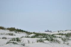 DSC_8818 (Herman Verheij) Tags: vlieland vliehors