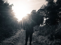 One touch of nature makes the whole world kin (stckrboy) Tags: sunshine flare lensflare day outdoor unsc leaves halo fireteamapollo scotland love bright forest ray monochrome airdrie grass trees tree lanarkshire sun countryside