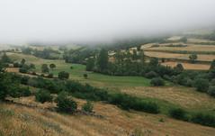 Valle de Lago (happy.apple) Tags: camnrealdelamesa principadodeasturias spain es valledelago fog field summer