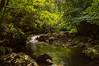 Rio (Rafa Devesa) Tags: cantabria altocampoo reinosa argüeso gato avestruz paisaje atardecer surf agua mar angel flor azul fuentede picosdeeuropa españa spain nikon d3200