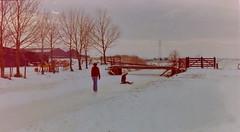 dutch winter (9) (bertknot) Tags: winter dutchwinter dewinter winterinholland denbommel winterinthenetherlands hollandsewinter denbommelandsurrounds winterinnederlanddutchwinter