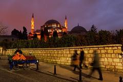 Istanbul - Sulemaniya Mosque (jerome taylor) Tags: travel tourism turkey asia europe muslim islam photojournalism istanbul mosque journalism masjid islamic travelphotography