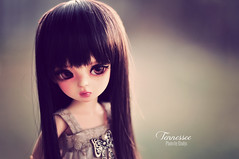 Tennessee (Eludys) Tags: doll heart bubble bjd yosd dolldoll dollndoll eludys