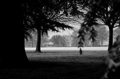-2 Degrees in the shade - Birmingham (Thumbs Footage) Tags: canon photography birmingham midlands blackwhitephotos thumbsfootagephotography
