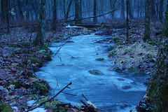 Forgotten Stream (Matthew Slowik) Tags: blue trees winter cold fall abandoned ice water leaves fog forest flow moss sticks woods rocks stream silent connecticut deep running calm steam flowing