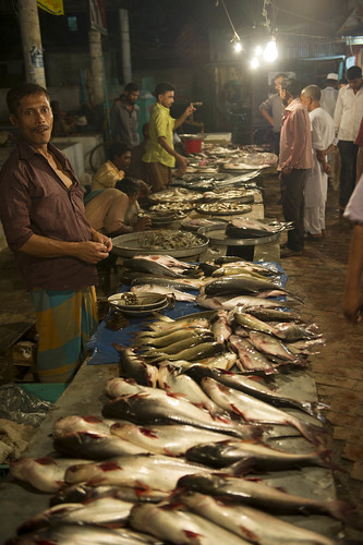 A fish market in Barisal, Bangladesh. Photo by Finn Thilsted, 2012.