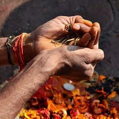 kedar (baxsyl) Tags: people india closeup square hands nikon main prayer offering varanasi hinduism kashi puja inde hindufestival carr banaras benares grosplan mar13 priere uttarpradesh hindouisme 2013 offrande hinduritual d7000 ceremoniehindoue baxsyl