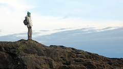 Sophie with Skyline over Sandstone (C Wood) Tags: ocean beach march spring marine bc pacific britishcolumbia vancouverisland pacificocean shore botanybay botanicalbeach juandefucamarinetrail