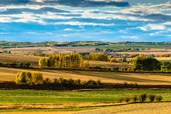 A Tuscan landscape in Alberta (Martin Thielmann) Tags: ab rollinglandscape harvestedfields lushgreenfields southofcremona standsoffallcolouredfoliage