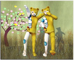 Bears in Arms (Ravi Shelter) Tags: supposes naminoke springisnearhunt