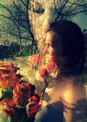 dreamy (dashachovancova) Tags: red portrait woman flower love girl beauty rose amazing nikon passion dreamy hold inlove d90 herbaria