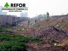 PREVENCION INCENDIOS FORESTALES ADIF - REGENERACIO FORESTAL S.L. TRATAMIENTO HERBICIDA  LINEA MURCIA CARTAGENA F2 (JOAQUIN PERALES MARTINEZ - REFOR S.L.) Tags: erosion ave ferrocarril renfe medioambiente forestales forestal jardineria cortafuegos adif infraestructuras obraspublicas fitosanitarios enagas desbroce tragsa hidrosiembra aenor redelectrica silvicultura maquinariaforestal refor agroforestal vaersa controldeplagas trabajosforestales maquinariaagraria franjadeseguridad desbroces mantenimientoinfraestructuras forestalsl reforsl controlerosion joaquinperalesmartinez regeneracioforestalsl prevencionincendiosadif prevencionincendiosforestales prevencionincendiosferrocarril incendiosferrocarril limpiezavegetacion lineaferrocarril jardineriaimagenes controldelavegetacion controlvegetacion prevencionincendiosforestalesadif prevencionincendiosimagenes estabilizaciontaludes estabilizaciondetaludes aveadif restauracionmedioambiental maquinariajardineria trabajostragsa regeneracionforestal trabajosredelectrica prevencionincendiosforestaleslineaaltatensin cortafuegosredelectrica prevencionincendiosredelectrica trabajosaltatension trabajossilvicolas prevencionincendiosforestalesredelectrica tratamientosfitosanitarios tratamientoherbicida maquinariatratamientosfitosanitarios biocidas defoliacionquimicavegetacion mantenimientoferrocarril prevencionincendioslineaaltatensin mantenimientopreventivoferrocarril controldelavegetacionenlasviasferroviarias defoliacionquimica desherbadoquimicodelasviasdeferrocarril