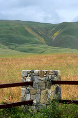 Vanishing Wild Flowers (socaltoto11) Tags: landscapes wildflowers windwolvespreserve californialandscapes maricopaca