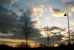 O dürften alle huldgend grüßen (amras_de) Tags: light luz licht wiesbaden lumière luci lys lux luce solas lutz lumina llum valo sauerland fény ljus lumine isik ljós dotzheim swiatlo svetlo lig lumo argi valgus šviesa gaisma svjetlost liicht svetloba sylterstrase
