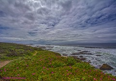 Pescadero Beach Looking South (HavCanon.WillTravel) Tags: pacificocean iceplant hdr fdrtools stormclounds canon5dmkii