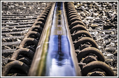 Blue Rinse and Curlers (Jim the Joker) Tags: 66176 class66 generalmotors ews dbs dbschenker rail railhead reflection railway train