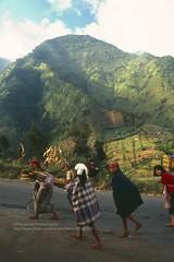 Gunung Bromo, local farmers (blauepics) Tags: indonesien indonesia indonesian indonesische east java ostjava gunung bromo mount volcano vulkan mountain berg landscape landschaft farmers bauern frauen women girls mdchen work arbeit agriculture landwirtschaft 1991