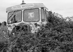 Recovery and Beyond... (roger.w800) Tags: truck lorry recoverytruck recoverylorry breakdownlorry abandoned outtopasture retired obsoloete rust rusty rusting rusted aec bedford aeclorry bedfordlorry commercial vehicle old decrepit disused