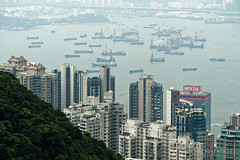 20160830-13-View of Hong Kong tower apartments and buildings from Victoria Peak (Roger T Wong) Tags: 2016 hongkong rogertwong sel70300g sony70300 sonya7ii sonyalpha7ii sonyfe70300mmf2556goss sonyilce7m2 thepeak victoriapeak apartments buildings haze skyline skyscrapers smog travel