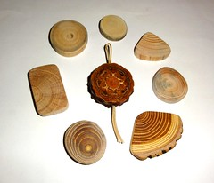 Jewelry wood supplies findings crafts. Wood Jewelry sanded slices, pine cone slice. Natural Colors Wood parts earrings, pendants, necklaces (john bonham2) Tags: jewelrysupplies jewelry findings pineconeslices wood slices woodslices natural pine cone slice supplies nature texture colors tree slabs tags pendants keychains keyrings