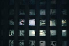 Dirty glass (gol-G) Tags: sony a7 ilce7 alpha7 nokton 35mm f12 vmadapter voigtlandernokton35mmf12aspherical digital color japan selectiveconceptualdof bokeh tokyo