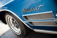 Big electric ccat (GmanViz) Tags: gmanviz color car automobile detail nikon d7000 1970 buick wildcat fender badge script type chrome wheel tire