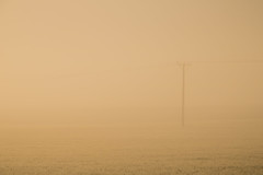 Hidden in the Mist