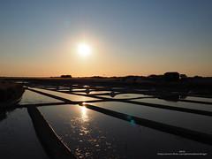 P8150434-flickr01 (Jip's7) Tags: marais salant noirmoutier em10 olympus couche de soleil sel eau