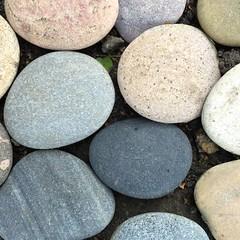 (hannemiriam) Tags: smooth sten denmark danmark iphonetoday iphone flock nature stones stone