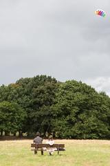 Kite (SReed99342) Tags: london uk england hampsteadheath kite parliamenthill