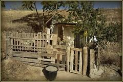 Vivienda  (jose luis naussa ( + 2 millones . )) Tags: viviendas cnosacromonte granada espaa paseos etnografa espaagranada vividstriking saariysqualitypictures concordians