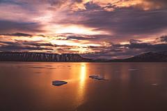 Arctic - Sunset over Disko Bay (Vivienne Gucwa) Tags: arctic viviennegucwa travel travelphotography greenland arcticsunset ice icefloe icesheet icebergs arcticice greenlandsunset diskobay